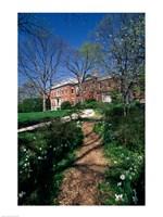 Trees in a garden, Dumbarton Oaks House, Georgetown, Washington DC, USA - various sizes, FulcrumGallery.com brand