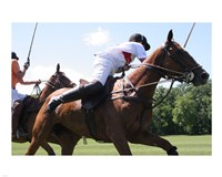 Polo nearside swing Fine Art Print