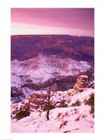 South Rim Grand Canyon National Park Arizona USA Fine Art Print