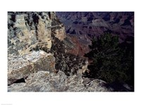 Looking Down Into the Grand Canyon Framed Print
