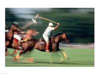 Polo - running horses Fine Art Print