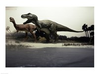 Side profile of a tyrannosaurus rex chasing an albertosaurus - various sizes