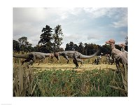 Side profile of two pachycephalosaurus fighting in a forest - various sizes