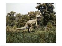 Side profile of a parasaurolophus walking in a forest - various sizes
