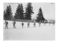 Austrians on Skis Fine Art Print