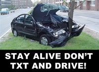 Don't Text and Drive - various sizes