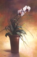 """Flowering Orchid I by T.C. Chiu - 24"""" x 36"""""""