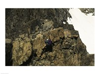 High angle view of a person mountain climbing, Ansel Adams Wilderness, California, USA Fine Art Print