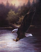 Eagle Prey Wall Poster