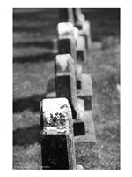 Rows of Stone Fine Art Print