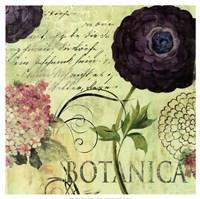 Botanica Framed Print