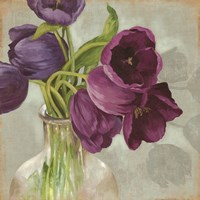 "12"" x 12"" Blue Tulip Pictures"