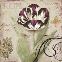 Tulipa II by Aimee Wilson - various sizes, FulcrumGallery.com brand