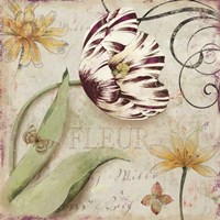 Tulipa I by Aimee Wilson - various sizes, FulcrumGallery.com brand