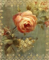 Rose on Sage Fine Art Print