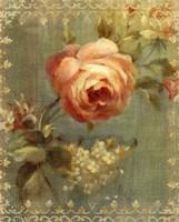 Rose on Sage Framed Print