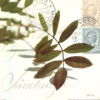 "Trailing Leaf by Deborah Schenck - 12"" x 12"""