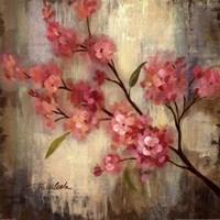 Cherry Blossom II Fine Art Print