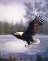 Eagle Fishing Fine Art Print