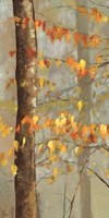 Golden Branches I by Allison Pearce - various sizes