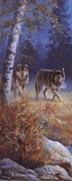 Moonlit Wolves Fine Art Print