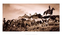 Gathering the Herd Fine Art Print