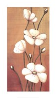 Shimmer II Fine Art Print