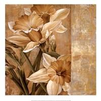 Champagne Daffodils I Fine Art Print