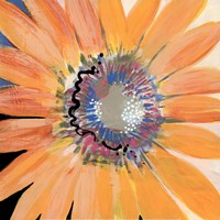 Sunshine Flower IV Fine Art Print