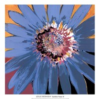 Sunshine Flower II Fine Art Print