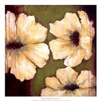 "Blooms II by Wani Pasion - 20"" x 20"""