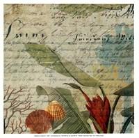 "Palms I - mini by Aimee Wilson - 13"" x 13"""