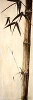 "Sepia Guadua Bamboo II by Patricia Pinto - 12"" x 36"""