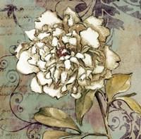 """Sweet Fragrance II by Lanie Loreth - 12"""" x 12"""" - $9.99"""