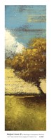 Bedford Green II Framed Print
