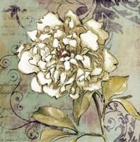 """Sweet Fragrance II by Lanie Loreth - 18"""" x 18"""" - $15.49"""