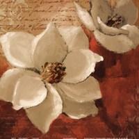 """Midday Magnnolias I by Lanie Loreth - 12"""" x 12"""""""