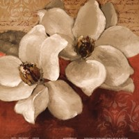 """Midday Magnolias II by Michael Marcon - 12"""" x 12"""""""