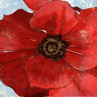 "Exotic Poppy II by Patricia Pinto - 12"" x 12"", FulcrumGallery.com brand"