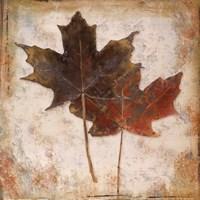 Natural Leaves IV Fine Art Print
