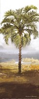 Beach Palm I Fine Art Print