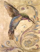 "11"" x 14"" Hummingbird Pictures"