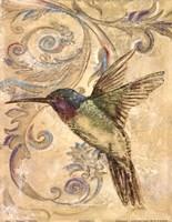 Hummingbrid II Fine Art Print