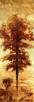 """Early Autumn Chill I by Michael Marcon - 12"""" x 36"""""""