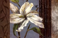 "Lily In Bloom by Lanie Loreth - 36"" x 24"""