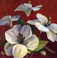 """Fireside flowers II by Lanie Loreth - 24"""" x 24"""""""