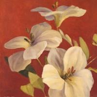 "Fireside flowers I by Lanie Loreth - 24"" x 24"""