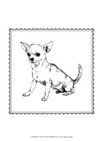 """10"""" x 13"""" Chihuahua Pictures"""