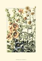 Wildflower Field I Fine Art Print