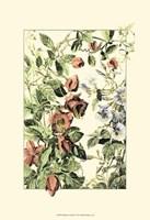 Wildflower Field II Fine Art Print